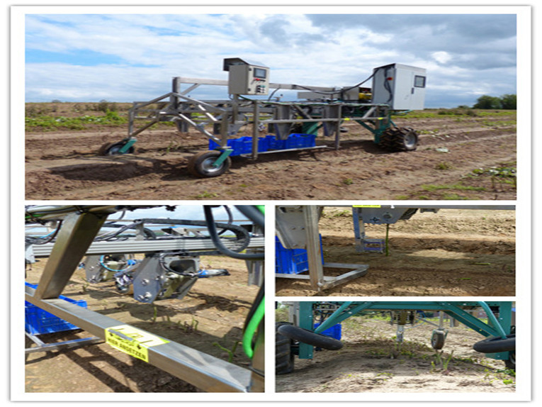 Case Study: Harvesting Robots Designed with Linear Systems